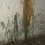 El Paso Public Urination